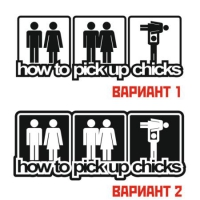 Наклейка How to pick up chicks