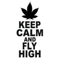 Наклейка Keep calm and fly high