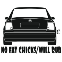 Наклейка No Fat Chicks VW Passat B5