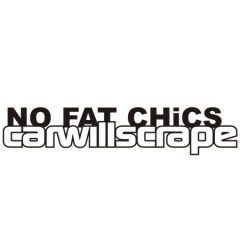 no-fat-chicks-car-will-scrape-450x4506