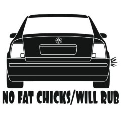 no-fat-chicks-will-rub--bez-vihlopa-450x450