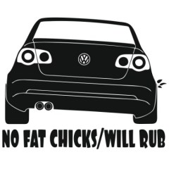 no-fat-chicks-will-rub-passat-b6-450x450